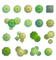 Trees top view for landscape design vector image