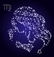 Zodiac sign of virgo made of stars vector image