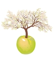 Blossoming new apple tree vector