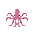 flat style symmetrical pink octopus octopus vector image