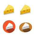 white and yellow cheese in flat style vector image