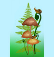mashrooms a fern and vector image