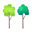 Abstract tree in green colors on thin trunk vector image