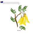 Kowhai Flowers The National Flower of New Zealand vector image