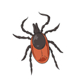 Tick Color vector image