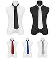 Necktie on mannequin template vector image