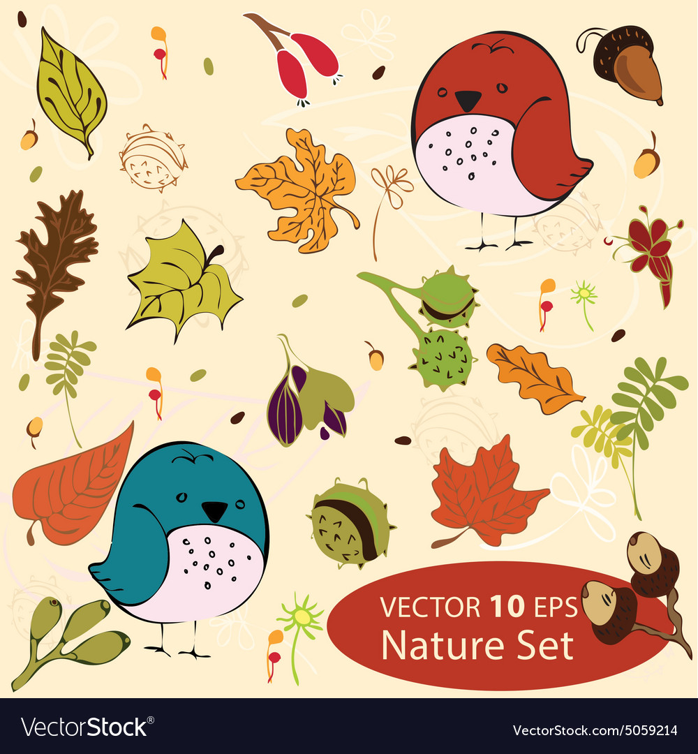 Set mini birds vector