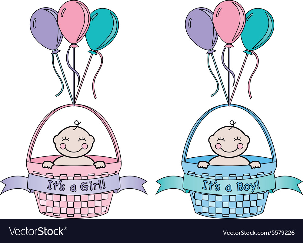 Its a baby in a basket with balloons vector