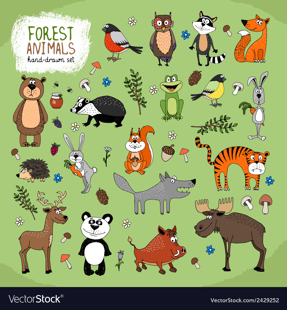 Forest animals handdrawn vector