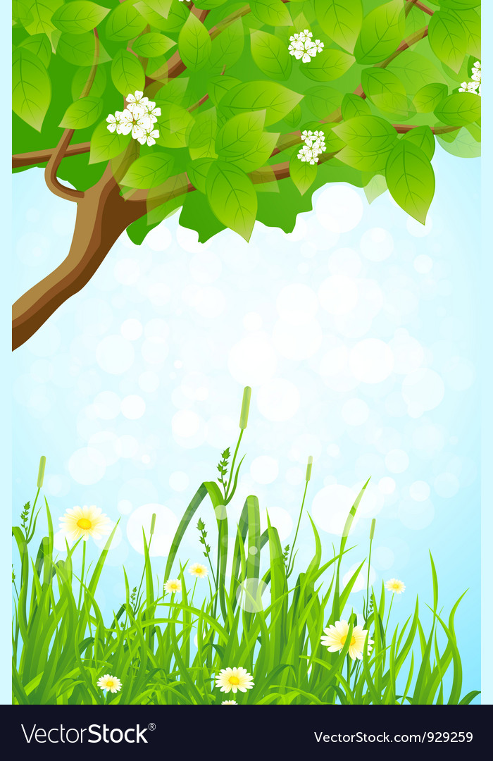 Green grass and tree branch vector