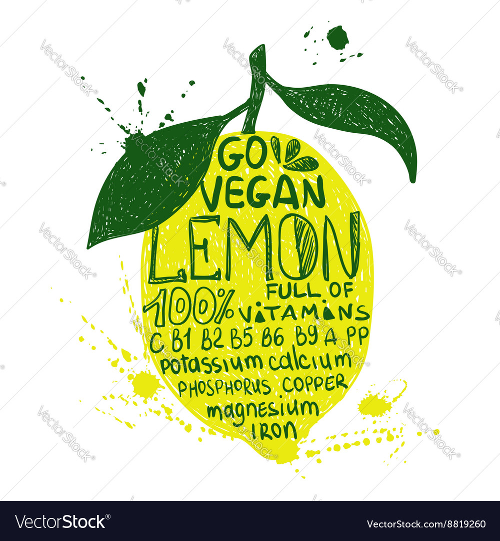 Of isolated colorful lemon silhouette vector
