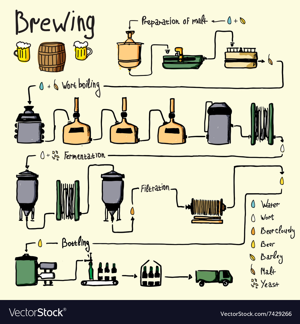 Hand drawn beer brewing process production vector