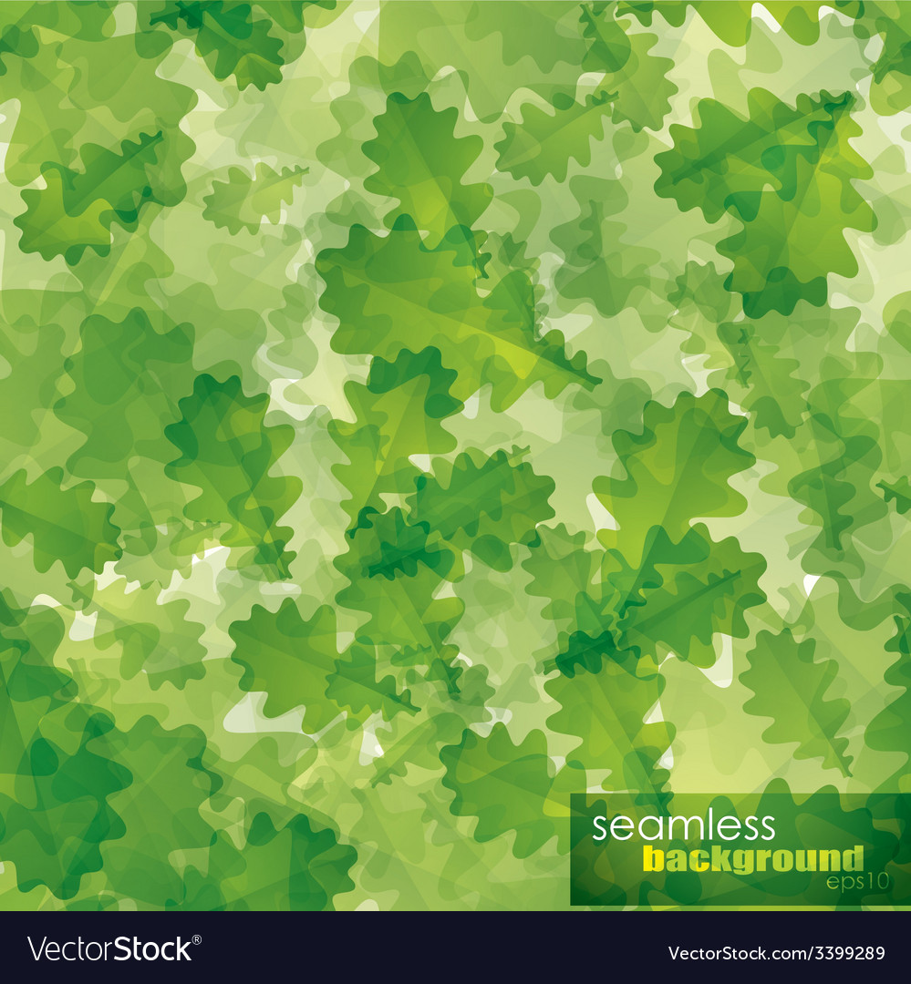 Seamless background with green oak leaves vector