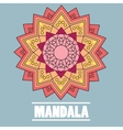 vintage mandala with text vector image