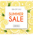 summer sale banner poster flyer blurred vector image