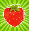 strawberry and sunburst vector image