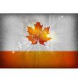 background autumn grey orange vector image vector image