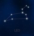 Leo constellation in night sky vector image