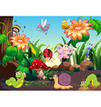 Many insects in the garden vector image