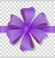 purple flower bow on transparent background vector image