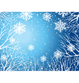 winter sky with trees and snowflakes vector image vector image