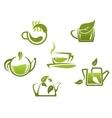Green tea symbols and icons vector image