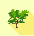 tree large leaves icon flat style vector image