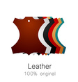 Leather original vector image