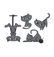 Grey cats collection vector image