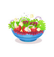 bowl of vegetable salad with cheese healthy vector image