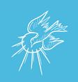 dove holyspirit flying vector image