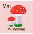 The English letter M and mushrooms with a red hat vector image
