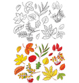 leaves sets vector image vector image