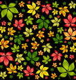 colorful autumn leafs vector image vector image