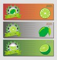 for ripe fruit green lime vector image