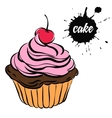 pastries sweets cupcake vector image vector image