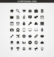 42 PROFESSIONAL ICONS vector image vector image