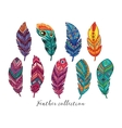 Colorful feathers set in ethnic style vector image