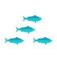 sardines school vector image