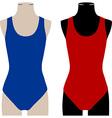 Swimwear vector image vector image