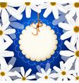 white daisies vector image