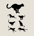 Cheetah Silhouette Collection vector image
