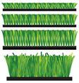 Artificial Grass - synthetic grass - artifi vector image