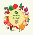 Organic food concept Vegetarian menu set vector image