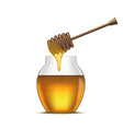 realistic detailed dipper and glass jar honey vector image