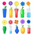 Flower in different vases set vector image