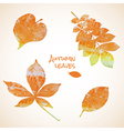 Colorful set of watercolor leaves vector image