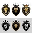 lion5 vector image