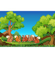 Five squirrels eating walnuts in park vector image vector image