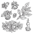 hand drawn holly decorations set vector image